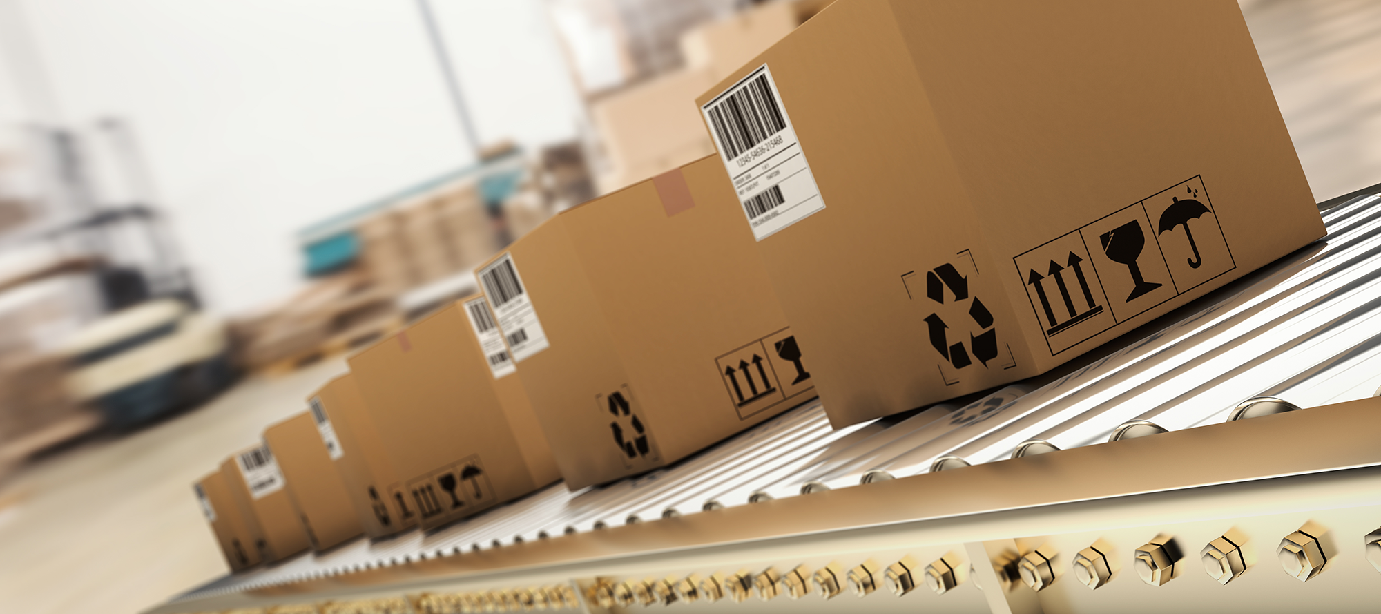Shipping Process and Automation Options